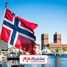 Mobiba Norway Dealer. Banya Heating Tents, Tents Stove, Camping Tents